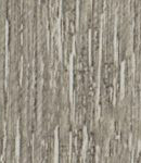 Turkey oak 1023